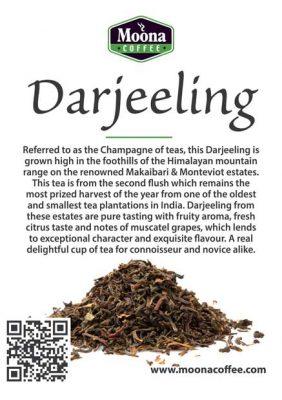 darjeeling-tea-image