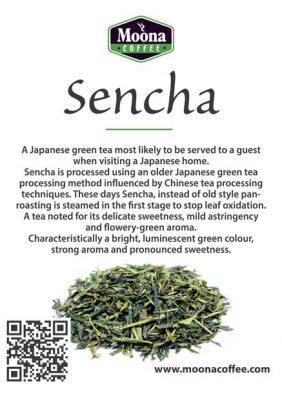 sencha-image